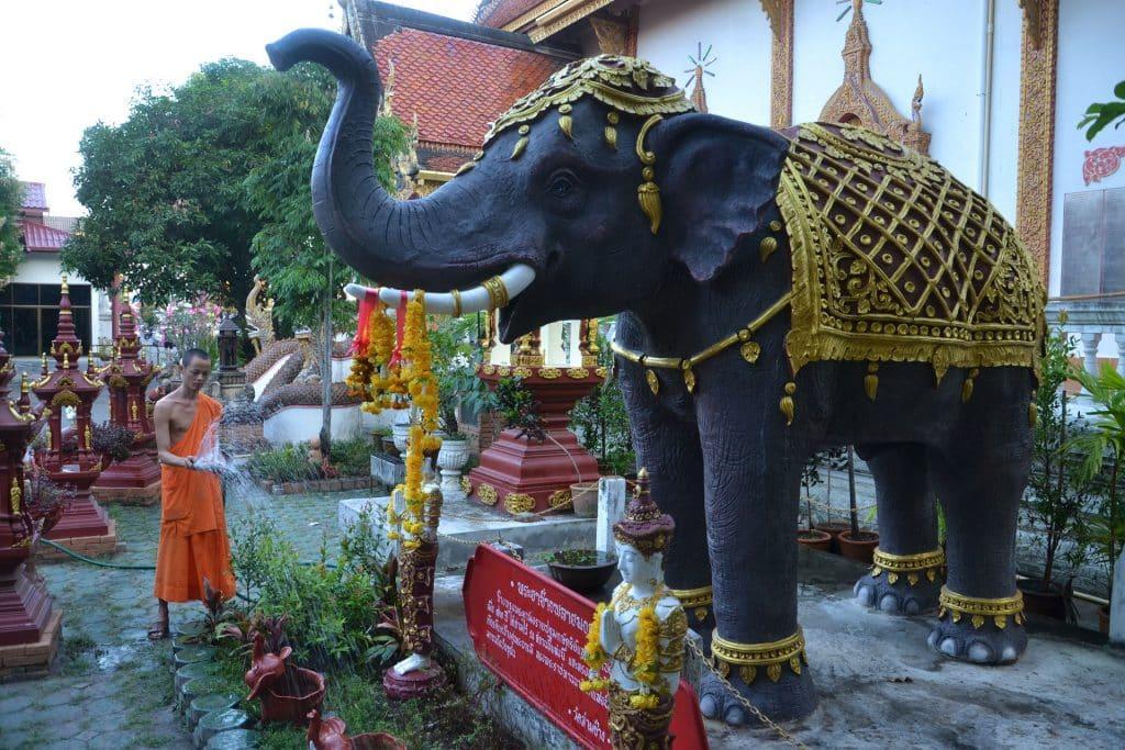 L'éléphant asiatique: symbole de la Thaïlande